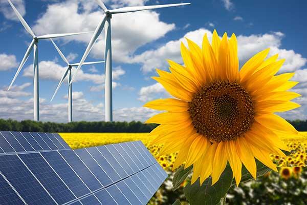 Renewable Energy Sources | The Future Illustration